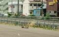 karugamo270523.jpg