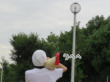 二太2015/07/20-2