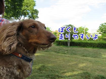 二太2015/07/25-6
