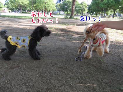 二太2015/07/26-2