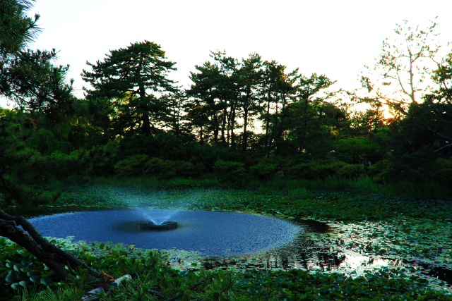 がっぽ公園1