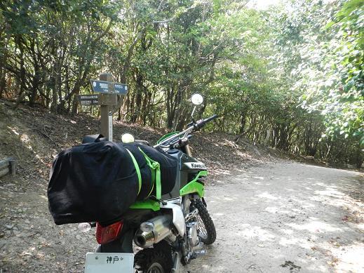 論鶴羽山 林道