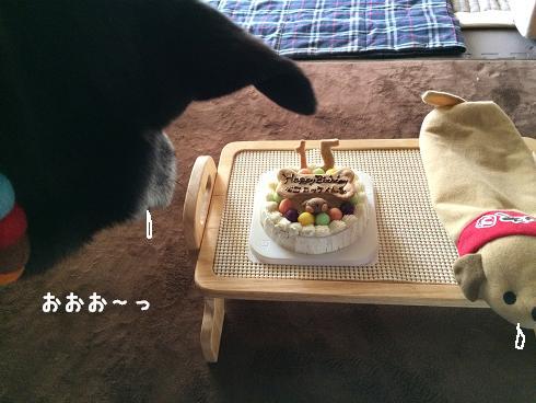 ケーキうまそー
