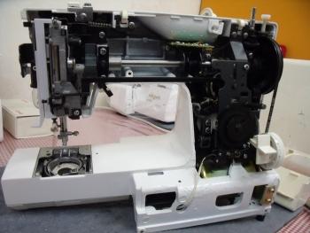 DSCF8521.jpg