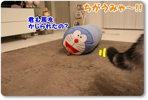 IMG_5687(1) - コピー