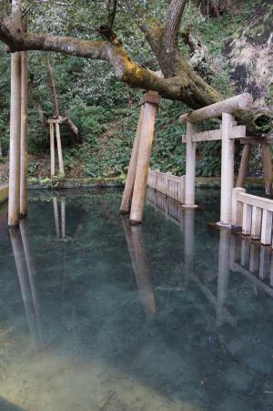 鹿島神宮 (2)