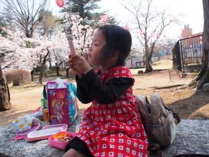 桜祭り (1)