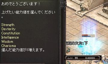 マタタビ55・1