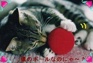 738513_photo0.jpg