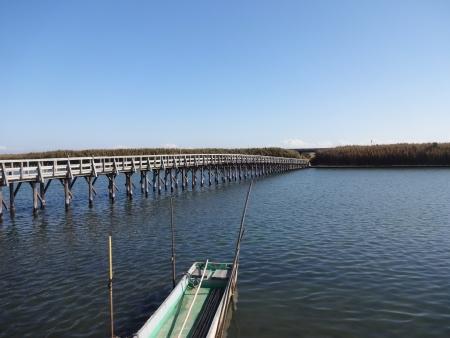 039珍しい木の橋