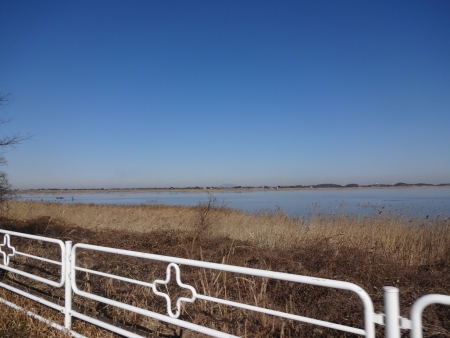 051北側の印旛沼、筑波山