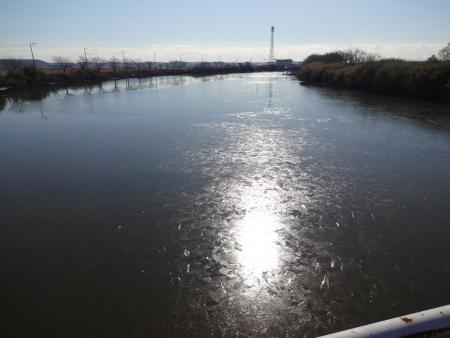 054長門川にin、凍ってる
