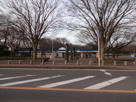 013ららぽの街では有名なアンデルセン公園