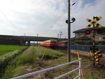 015K141に入り、ちょうど小湊鉄道の電車が
