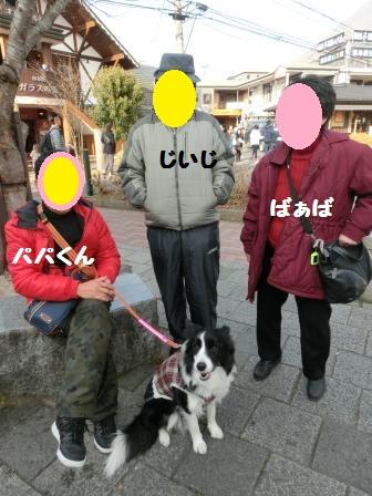 CIMG7802.jpg