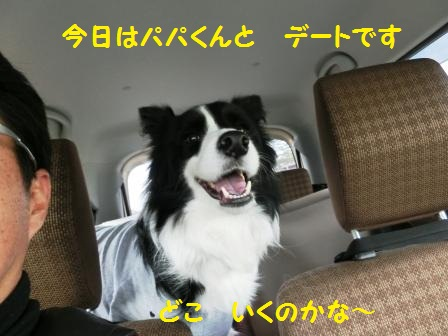 CIMG8549.jpg