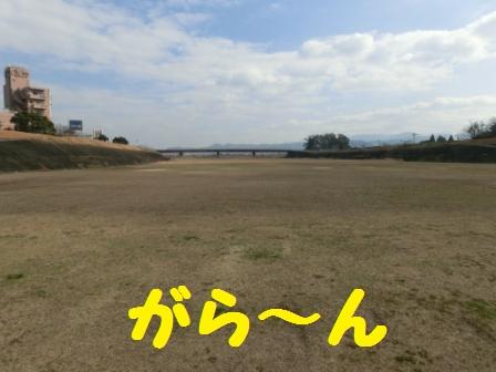 CIMG8558.jpg