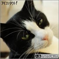 dai20150629_banner.jpg