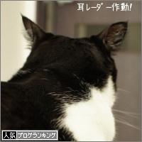 dai20150702_banner.jpg
