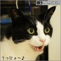 dai20150703_banner.jpg