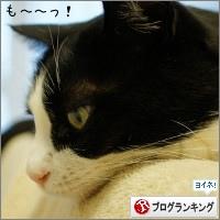 dai20150709_banner.jpg