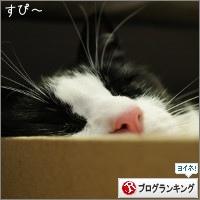 dai20150713_banner.jpg