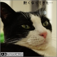 dai20150716_banner.jpg