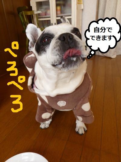 P1280722_convert_20150219191732.jpg