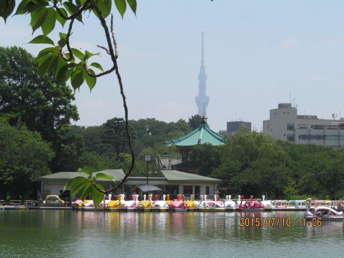 20150710shino20.jpg