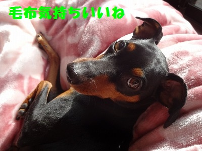 s-20150110注射 (6)