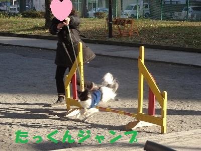 s-レッスン (15)