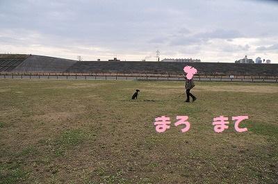 s-ロング待て1