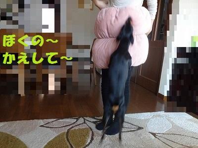 s-20150124ホイホイ (19)