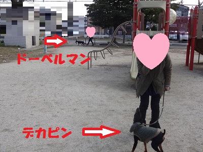s-20150205公園 (4)