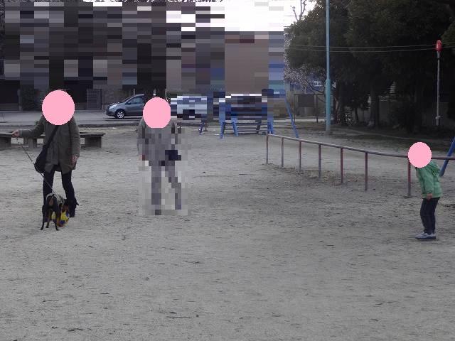 s-20150205公園 (6)