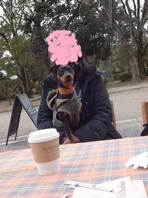 s-20150214公園カフェ (16)
