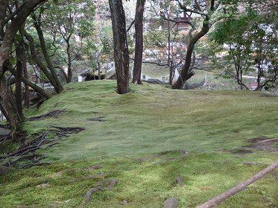 s-京都1 (19)