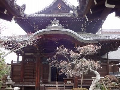 s-京都1 (23)