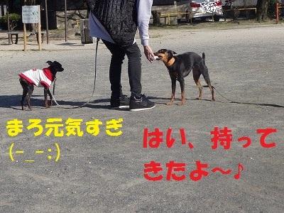s-0327ぷーぴー (11)