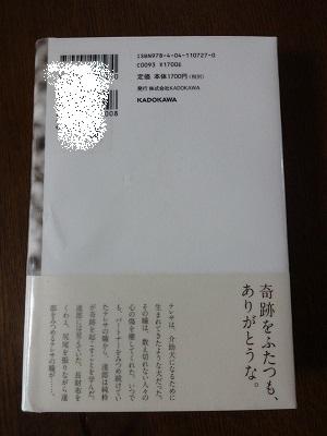 s-201504雨 (4)