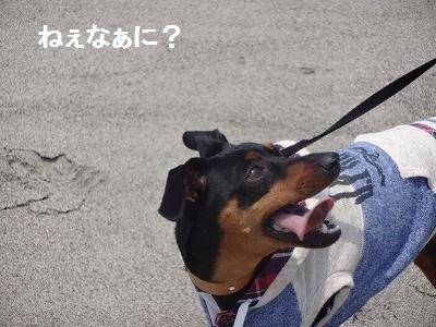 s-中田島 (9)
