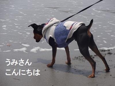 s-中田島 (11)