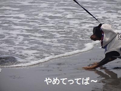 s-中田島 (14)