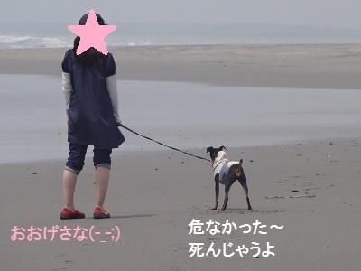 s-中田島 (16)
