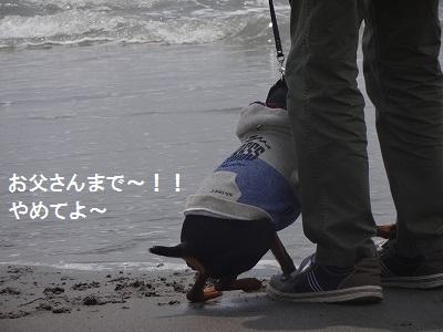 s-中田島 (20)