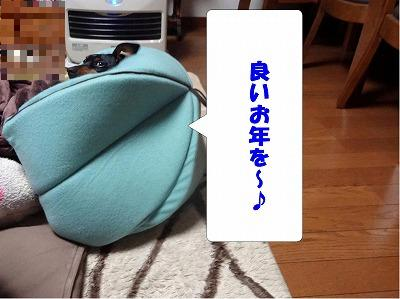 s-201412312.jpg