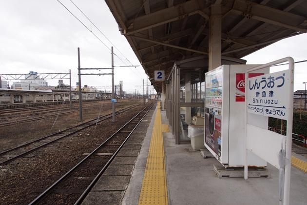 20150110_shin_uozu-02.jpg