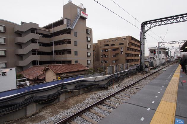 20150221_koshien-12.jpg