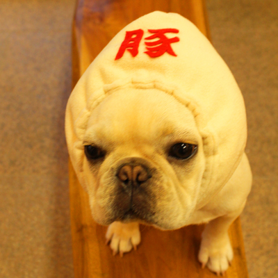 豚まん犬ヅラオ-ダ-メイド フレブル3