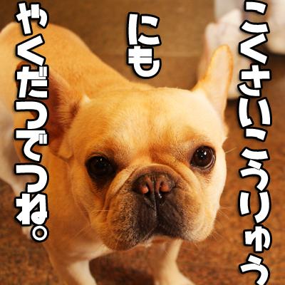 オ-ダ-メイド犬ヅラ自由の女神3